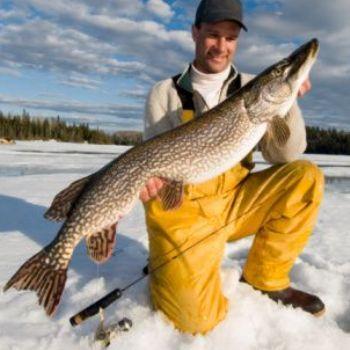 Новая версия игры в зимнюю рыбалку - Propilkki.0.3