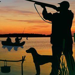 Рыбалка и охота